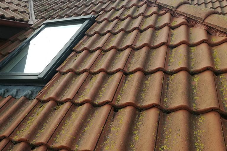 Gdynia pogórze czyszczenie dachów (11)
